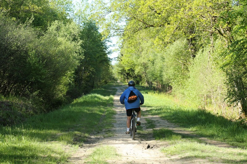 Cycling and hiking tours - Around Spa - Malchamps Fagne