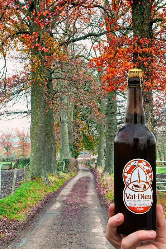 Wandel- en fietstochten - Val-Dieu Tripel - Bier