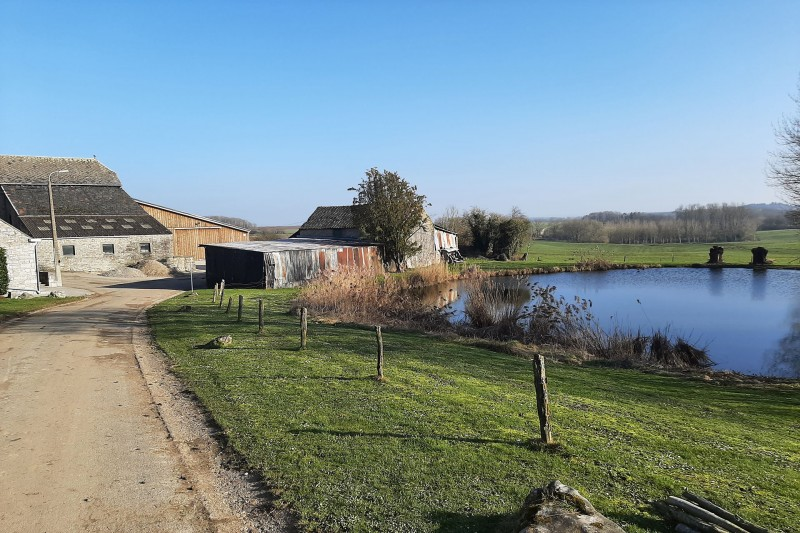 Cycling and hiking tours - Between Néblon and Condroz - Pair - Condruzian farm and pond