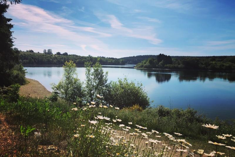 Wandel- en fietstochten - Het meer van Bütgenbach - Oevers van het meer