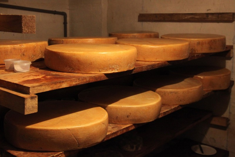 Repos-des-fromages