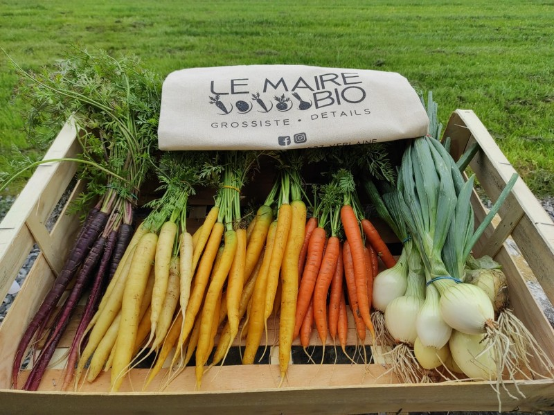 Le Maire Bio - carottes