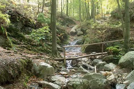 Ruisseau Le Chefna