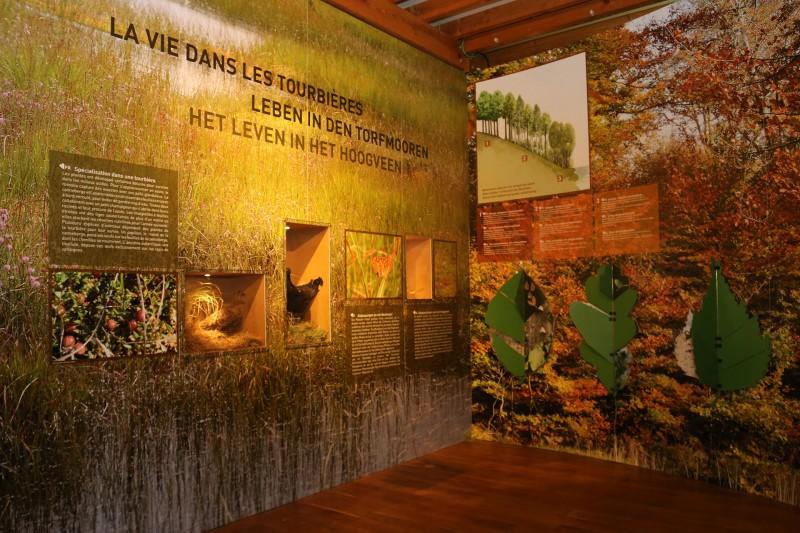 Musée Fania - Waimes