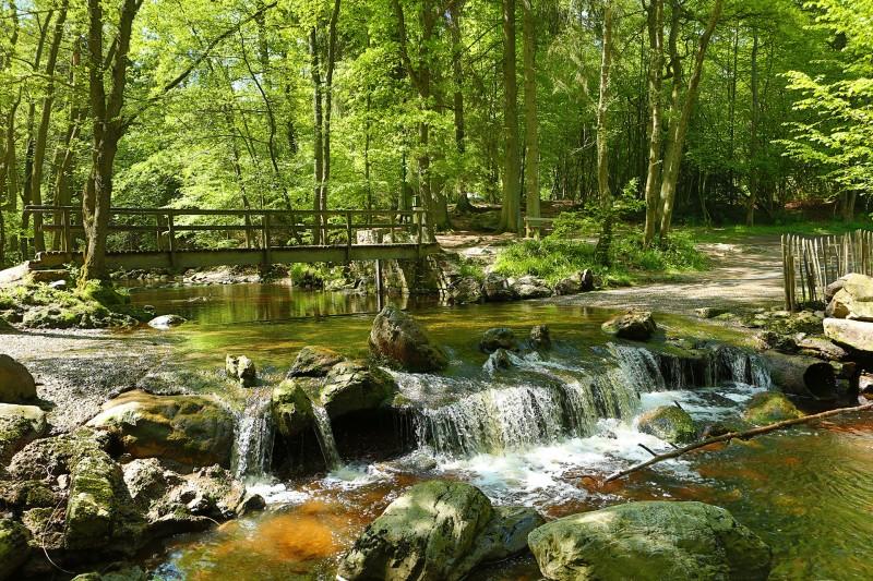Vallée de la Hoëgne - Jalhay - Passerelle et cascade