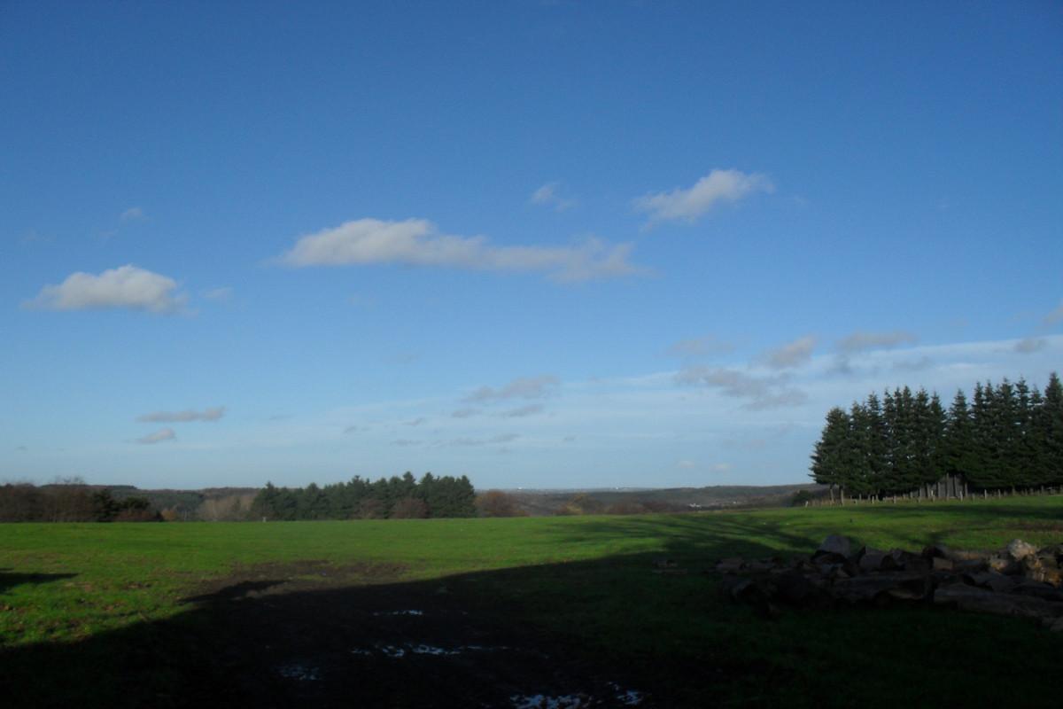 Maison Petits Loups - Sprimont - Vue paysage
