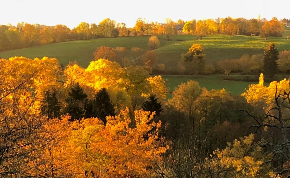 Balade d'automne ©Val-Dieu