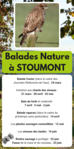 Balades-Nature-2019 fagotin