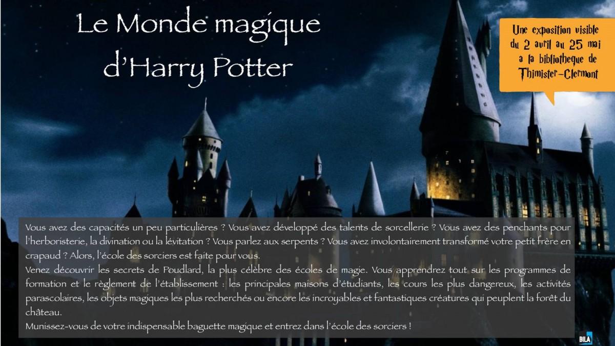 Exposition - Le monde magique d'Harry Potter 2019
