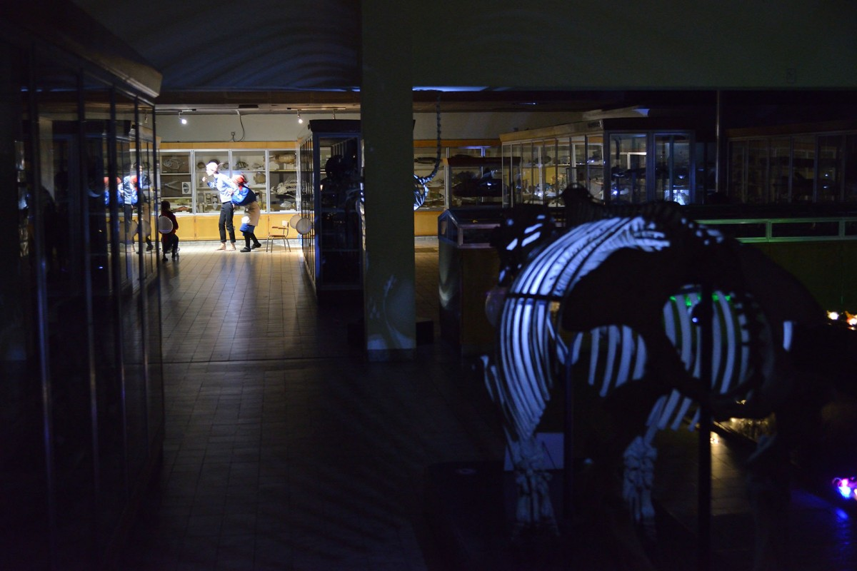 Nuits Aquarium-Museum - Liège