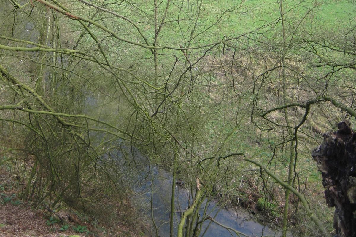 Chemins oubliés du 07 juin Moulin Valentin et son ruisseau © OT Flémalle