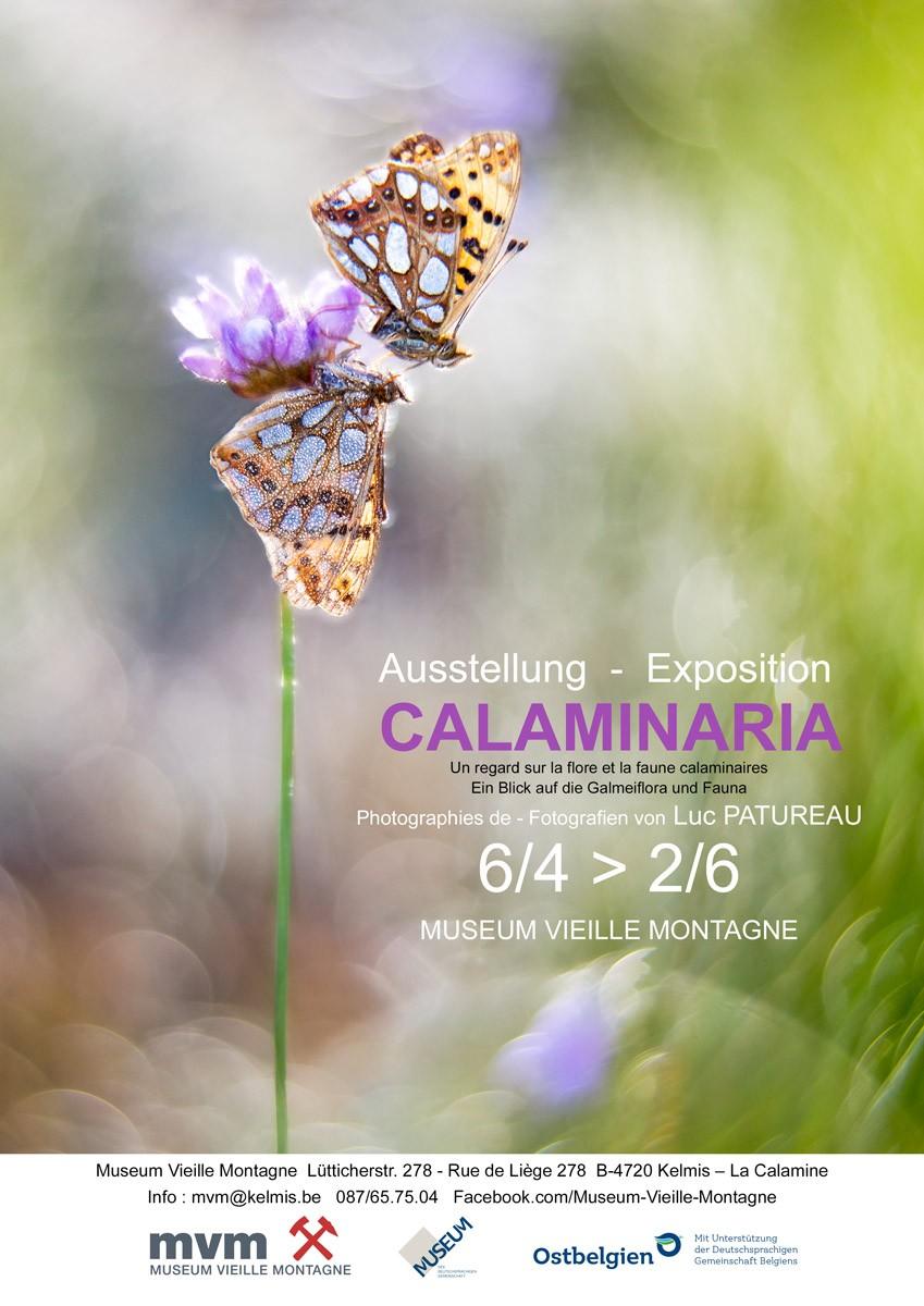 La Calamine - Affiche Expo Calaminaria