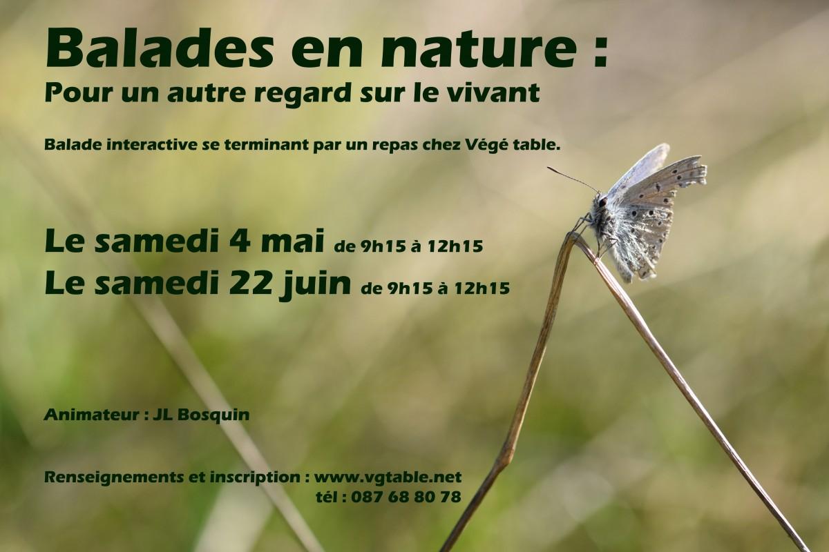 Balades en nature 2019