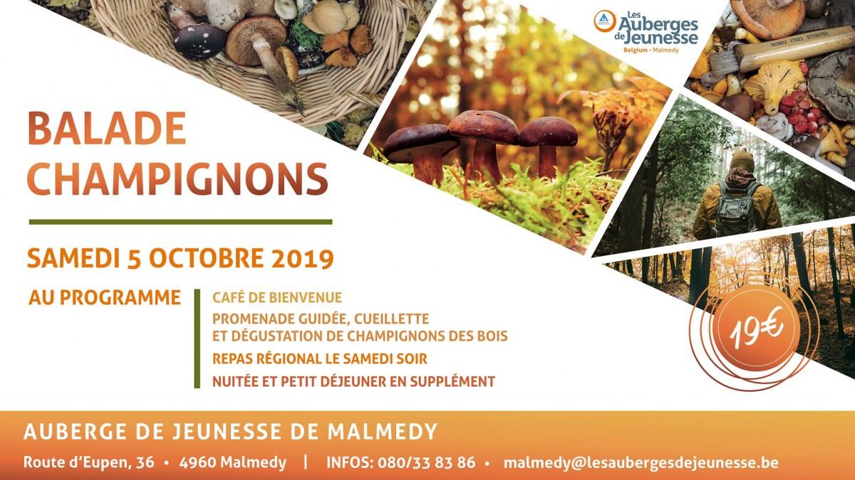 Malmedy - Balade Champignons - Affiche 2019