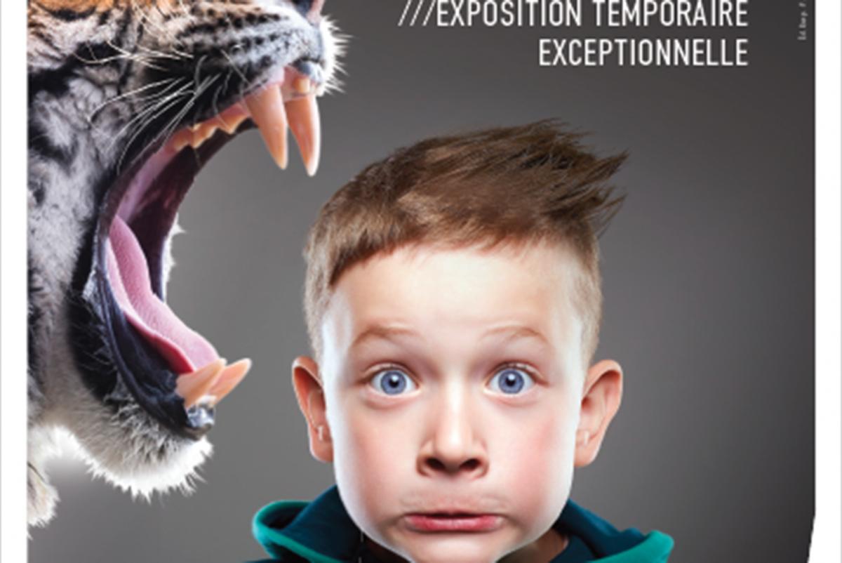 Félins ! Du tigre au Chat domestique - Prehistomuseum - Affiche expo