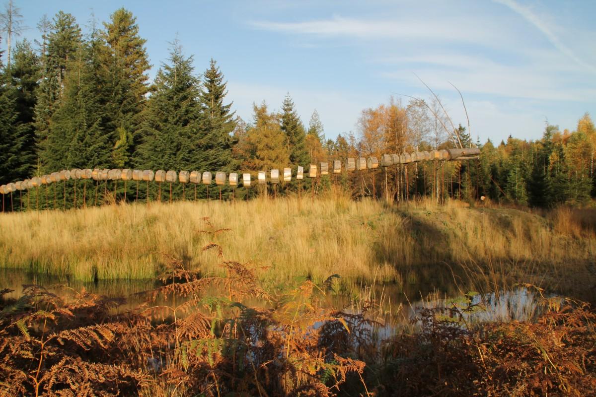 Arboretum_©MTPV (12)