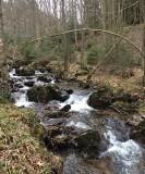 Aywaille - Promenade insolite - Ruée vers l'or à Aywaile dans le Vallon de la Chefna (Quarreux)
