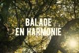 Ferrières - Bucolique - Balade en Harmonie