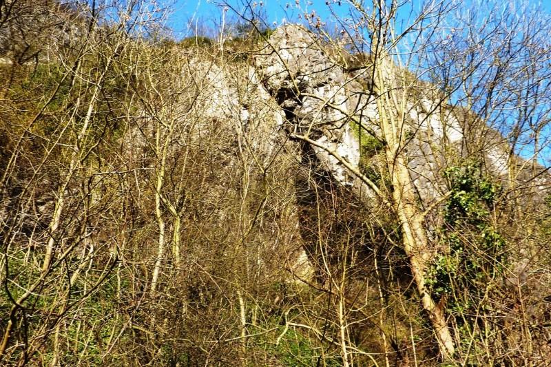 Sentier Nature du Bois des Manants