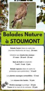 Balades-Nature-2019 fagotin