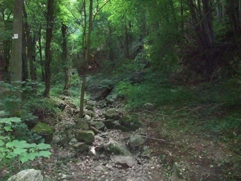 Sentier Nature du Bois des Manants TILFF