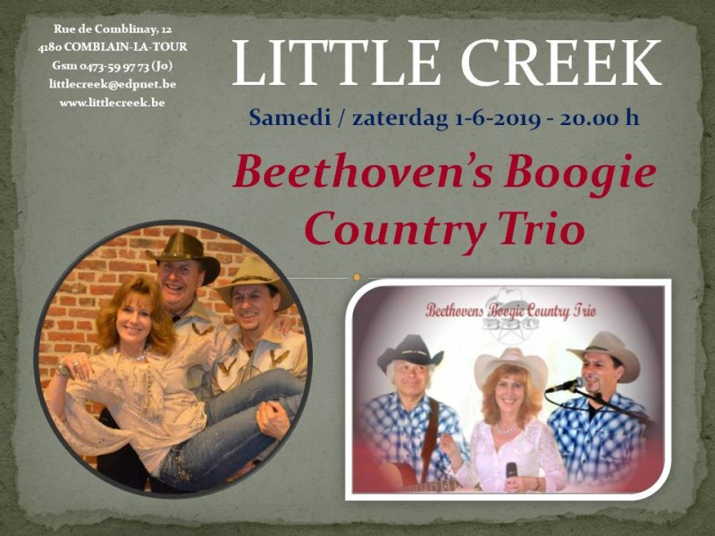 Beethoven's Boogie Country Trio