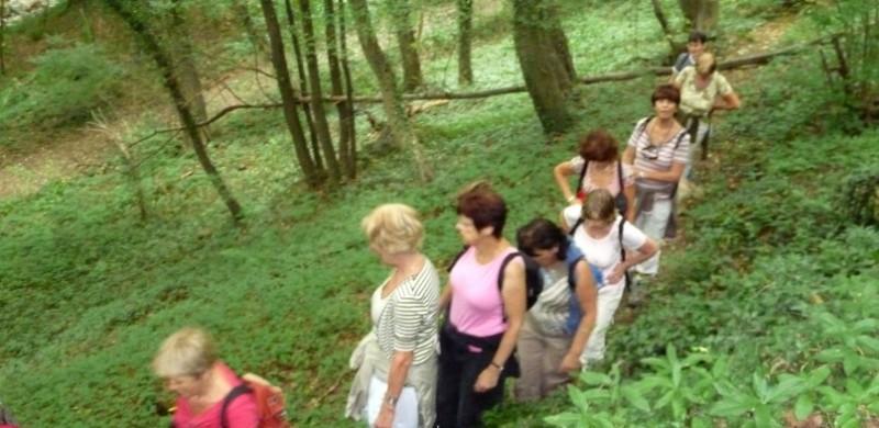 Promenade : Le Bois des Manants