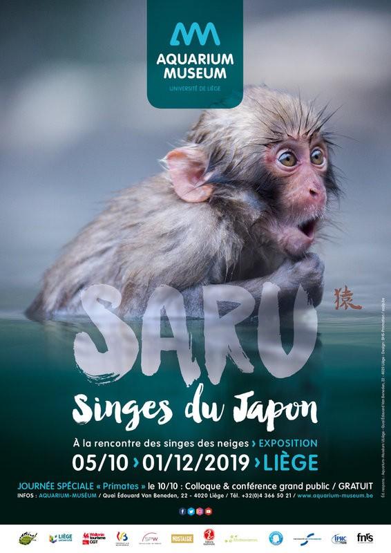 Expo Saru - Singes Japon - Liège - Affiche