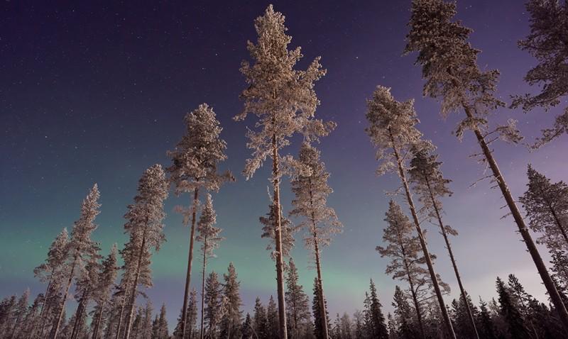 22 avr - VDM-Laponie-Vincent-Guth
