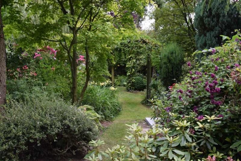 Jardin-helena-c-Silène